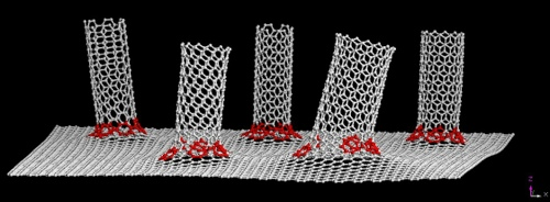 Nanotubes on graphene from rice