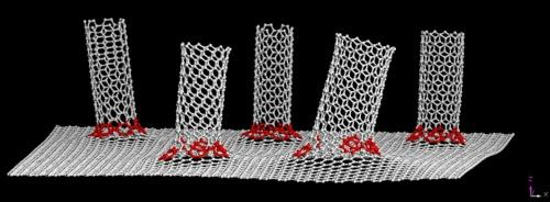 Nanotubes on graphene from rice