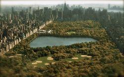 Zoo-central-park-ny-New-York-wildlife-690x431