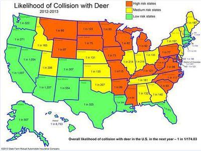 Deer attacks