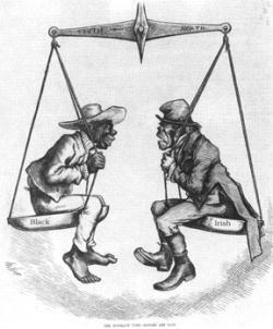 Irish immigrant cartoon